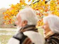 Senado aprova MP que cria nova fórmula para aposentadorias