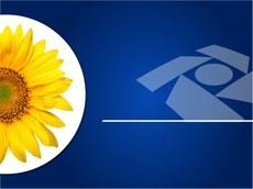 Comissão de Ética Pública da Presidência ratifica a importância da Comissão de Ética da Receita Federal