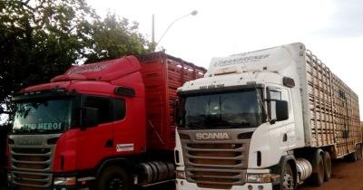 Fisco faz abordagens de carregamento de gado na Regional de Alvorada