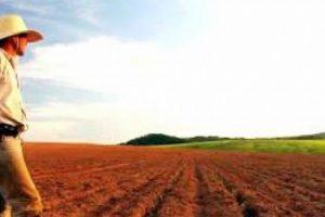 Produtores têm até segunda para aderir ao Refis Rural