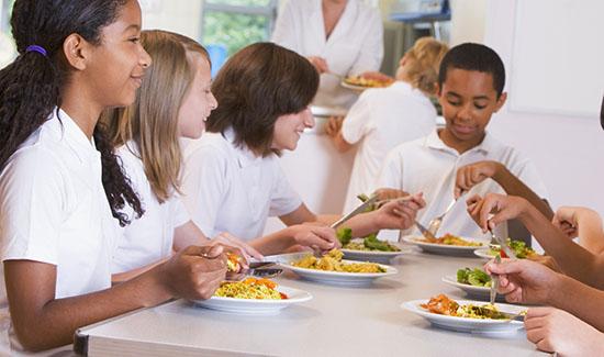 TRF4 reconhece que registro em Conselho Regional de Nutricionistas não pode ser exigido de centro educacional em Itajaí (SC)
