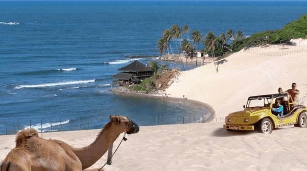 RN prorroga calendário de vencimentos do IPVA para empresas de turismo