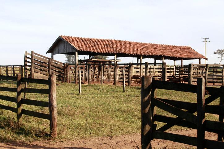 1ª Turma reduz para meio alqueire parte de fazenda penhorada para pagar dívida trabalhista
