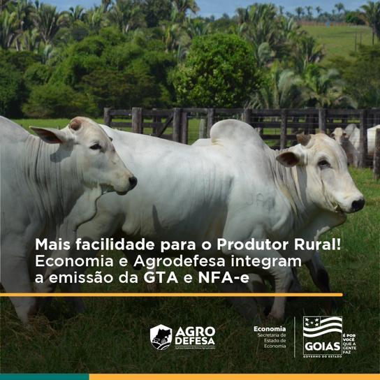 Governo de Goiás lança integração da GTA e NFA-e